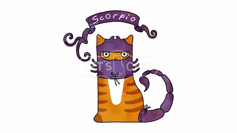 Scorpio Cat - Zodiac Sign