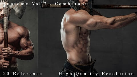 Anatomy Vol 7 - Combatant