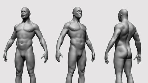 Male Body Base Mesh