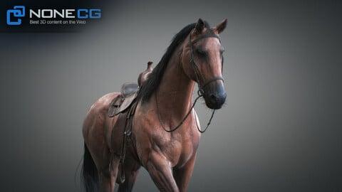 Animated Horses v2