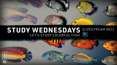APR-14 LiveStream: Let's Study Fishies! - with art.uro