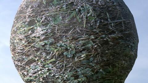 Dirty Grass 1 PBR Material