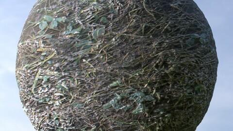 Dirty Grass 2 PBR Material