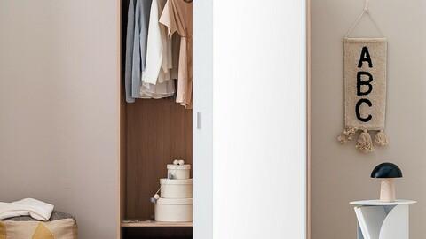 Modern Big Sliding Mirror Closet 120cm Hanger Type 4color