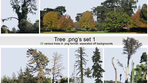 PNG photopack Trees vol. 1