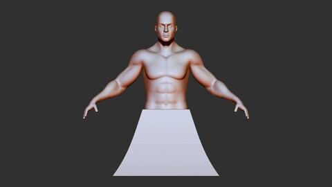 male torso 3dprint