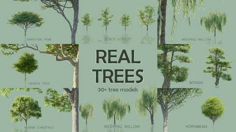 Real Trees Pack