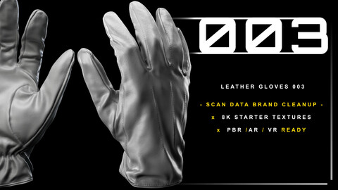 Leather Gloves 003