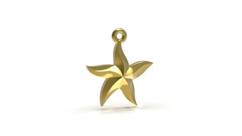 Starfish 3D print model