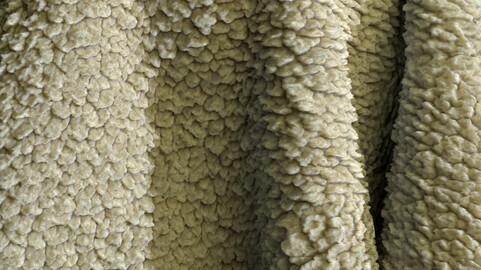 Sheep wool PBR texture