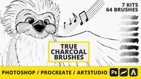 64 True Charcoal Brushes for Photoshop - Procreate - Artstudio Pro