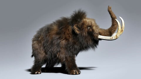 Woolly Mammoth - Rigged With Fur
