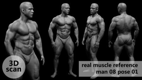 3D scan real muscleanatomy Man08 pose 01