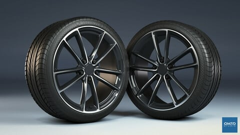 Wheel Rim and Tire Model