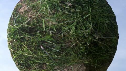 Dirt Grass 6 PBR Material