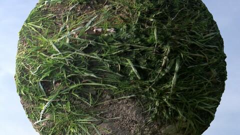 Dirt Grass 8 PBR Material