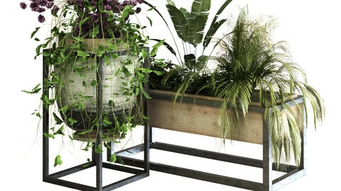 plant set 052