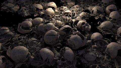 Broken Skulls with Spider Webs BUNDLE
