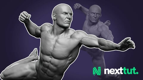 Dynamic Male Anatomy for Artists in Zbrush