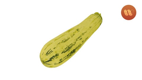 Zucchini Cucurbita pepo - Real-Time 3D Scanned Model