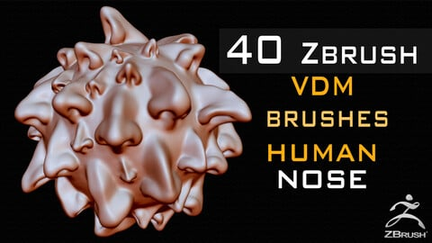 40 Zbrush VDM Human Nose Brushes + Alpha + FBX + OBJ