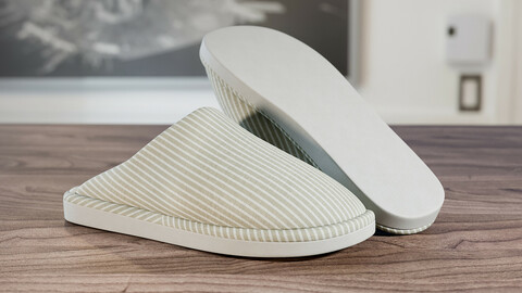 Realistic 3D model of Womens Slippers 1