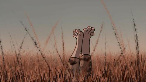 enjoy on the meadow
