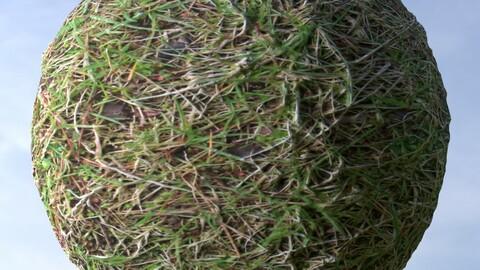 Grass 9 PBR Material