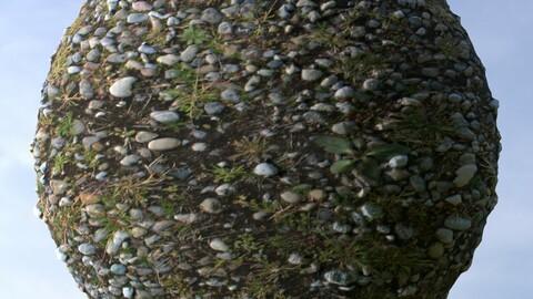 Gravel Grass 10 PBR Material