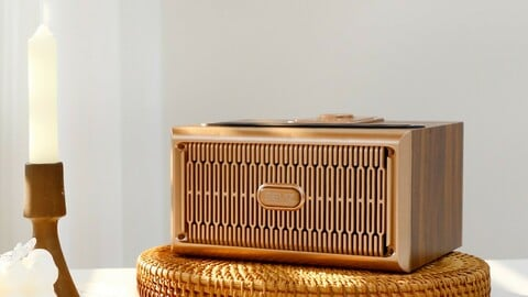 GOLD20W large-sized speaker