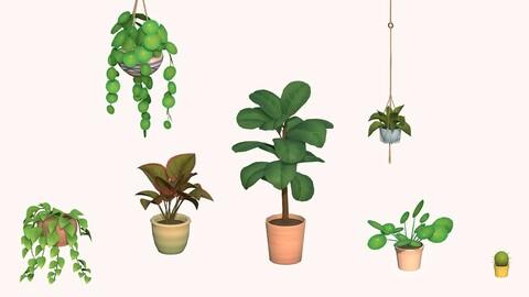 Happy Houseplant Set