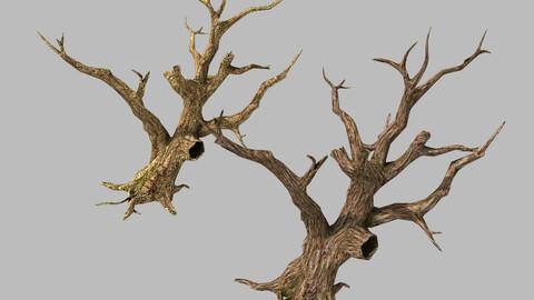 Brutal tribes - dead trees 04