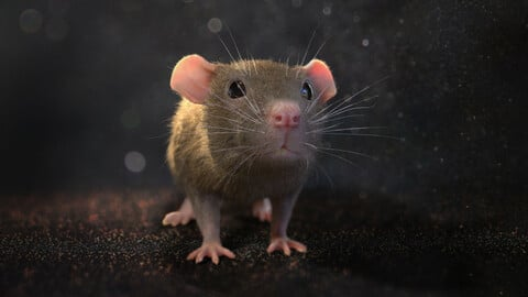 Brown rat with low poly fur