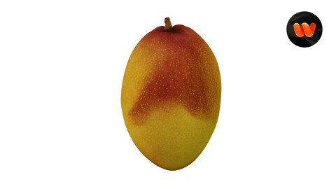 Mango - Extreme Definition 3D Scanned Model