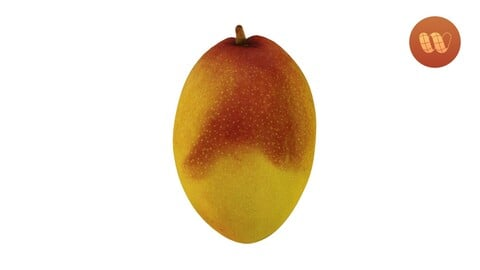 Mango - Real-Time 3D Scanned Model