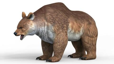 Fantasy Bear 3D Model