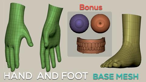 Hand and Foot Basemesh
