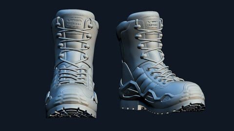 LOWA Tactical Boots - tactical military equipment