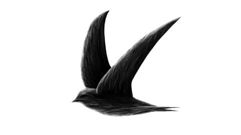 Swift design