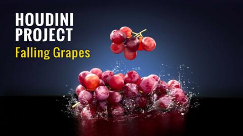 Houdini Hip File | Falling Grapes | VFX Grace