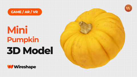 Mini Pumpkin - Real-Time 3D Scanned