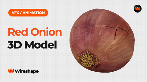 Red Onion - Extreme Definition 3D Scanned