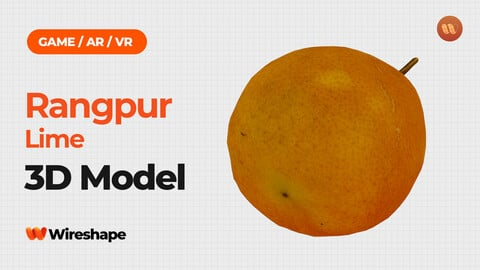 Rangpur Lime - Real-Time 3D Scanned