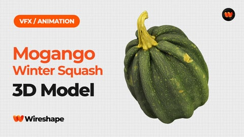Mogango Winter Squash - Extreme Definition 3D Scanned