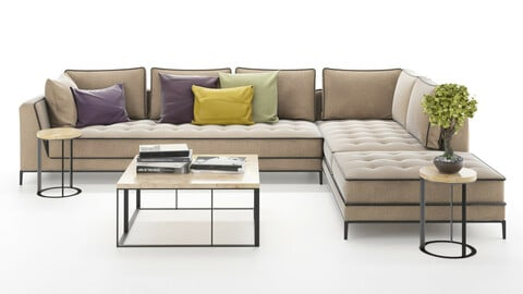 Corner sofa set with table and plant