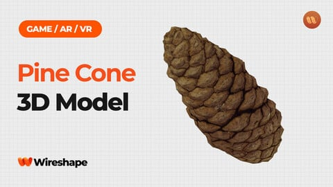 Pine Cone - Real-Time 3D Scanned