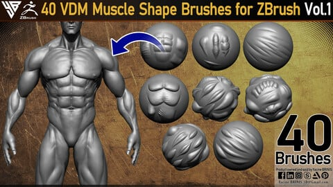 40 VDM Muscle Shape Brushes for ZBrush Vol 01
