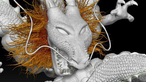 Shenron The Dragon