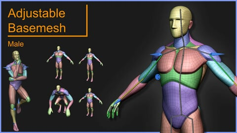 Adjustable Basemesh Stylized Male