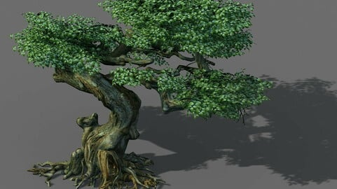 Game Model - Forest - Trees 12